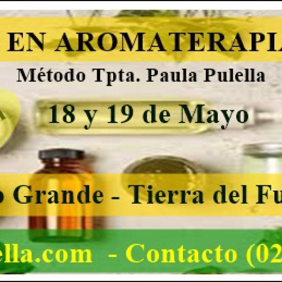 Formación en Aromaterapia Holística en Río Grande