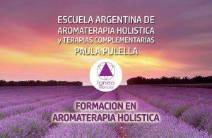 FORMACION EN AROMATERAPIA HOLISTICA Convertite en un calificado Profesional